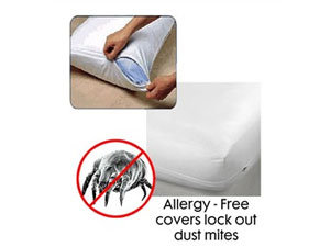Allergy free covers lock out dust mites