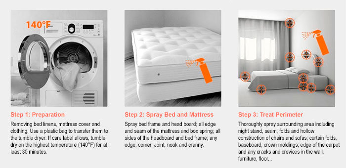 Three Steps to be Bed-Bug-Free