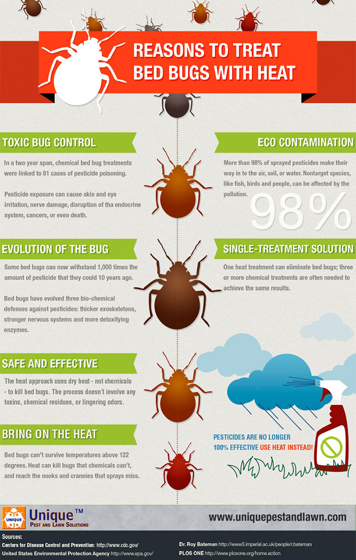 Reasons to treat beg bugs with heat Infographic