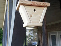 Carpenter bee trap plans