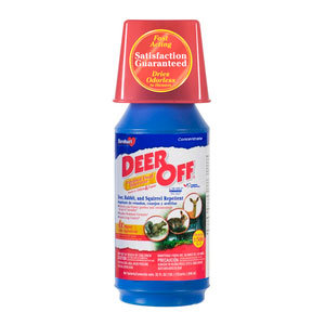 DEER OF Deer repellent concentrate by Havahart