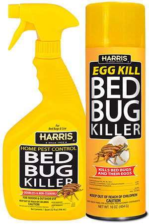 Bedbug killer spray by HARRIS