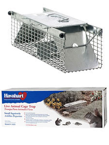 Havahart chipmunks trap