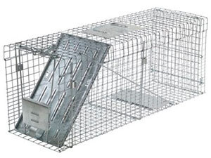 Large Havahart One Door Collapsible Trap