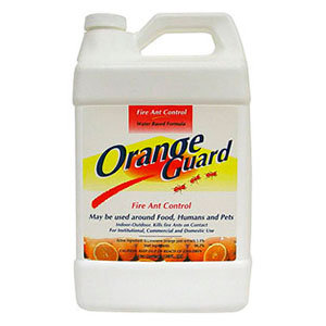 Orange Ant Guard