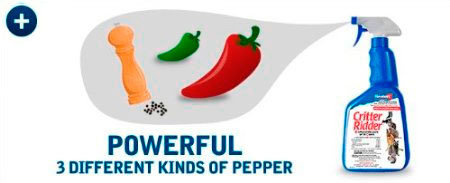 Powerful 3 different kinds of pepper