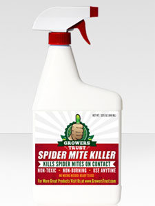 Spider mite killer spray