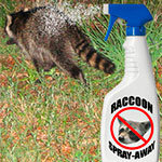 Raccoons spray away
