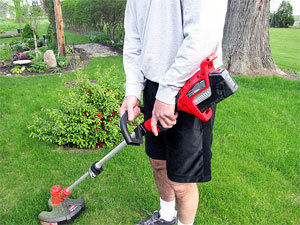 Vole pest control: keep the grass trimmed short