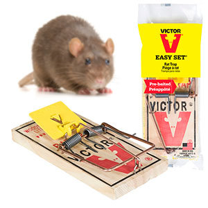 Victor Professional Rat Trap