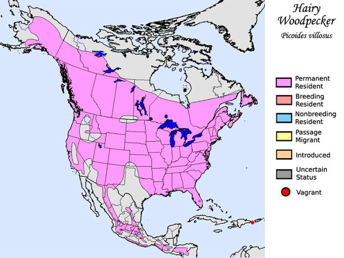 Woodpeckers habitat map